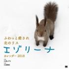 ふわっと癒され北のリス エゾリーナ カレンダー 2018